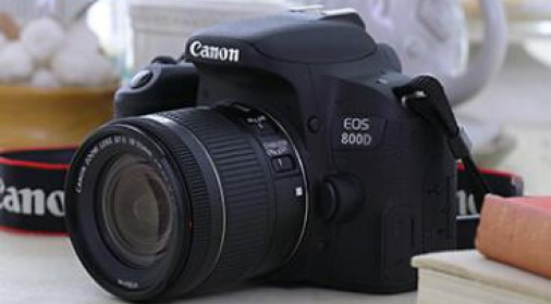 【最佳入门】佳能(Canon)EOS 800D 机身