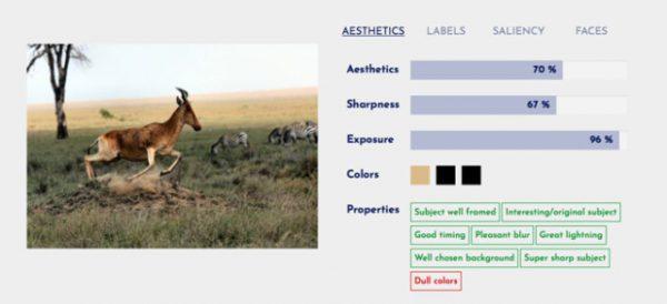 苹果收购法国图像识别公司 技术或植入iPhone