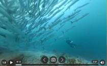 【免费软件】同时可以看全景视频+全景图播放器